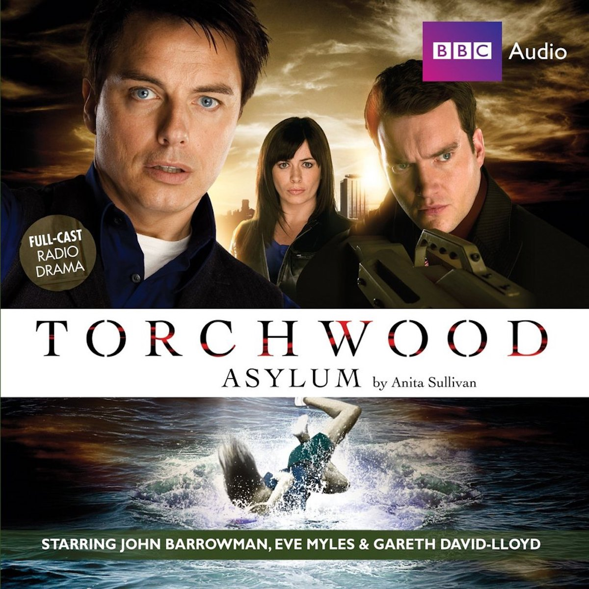 Torchwood Asylum